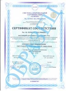 образец ISO/TC 29001