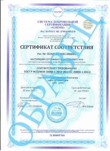образец ISO/IEC 20000