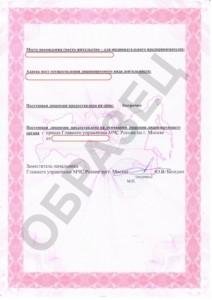 Образец лицензии МЧС