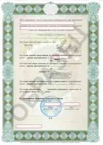 Образец лицензии на картографию и геодезию