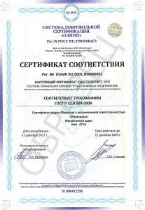 Образец сертификата ГОСТ Р 12.0.009-2009