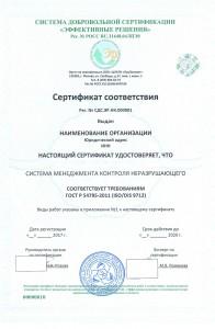 Образец сертификата ГОСТ Р 54795-2011 (ISO/DIS 9712)