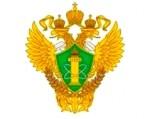Ростехнадзор подтвердил обязанность СРО размещать на официальном сайте решения органов управления в виде копий протоколов